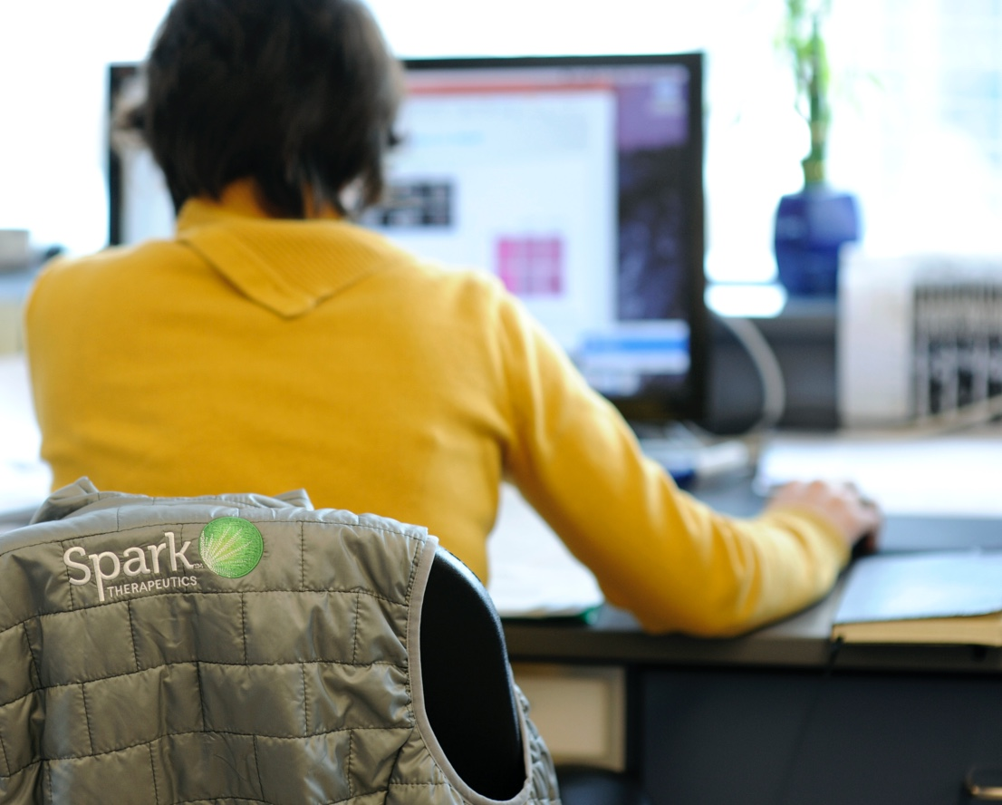 Rear view of Spark Therapeutics Medical Affairs team member sitting at a desk and working on a computer